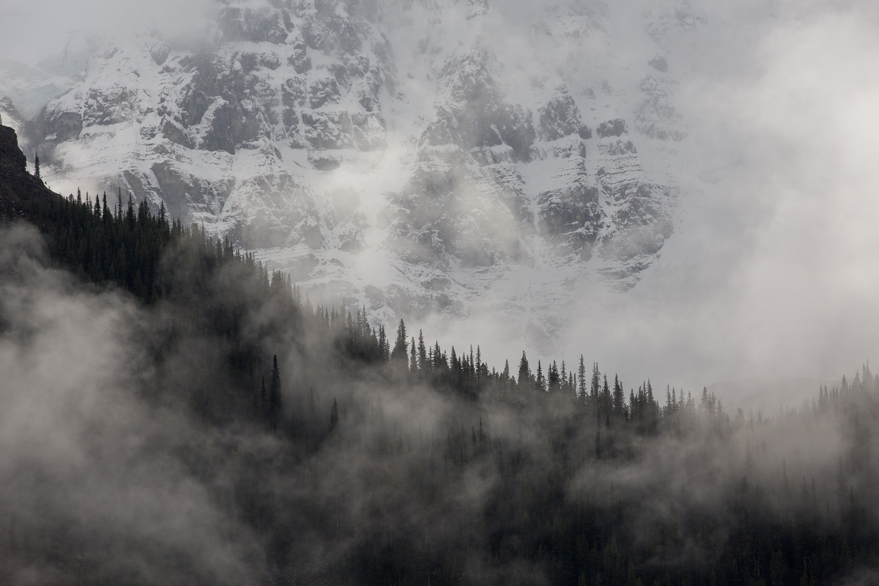 Canadian Rockies Fog