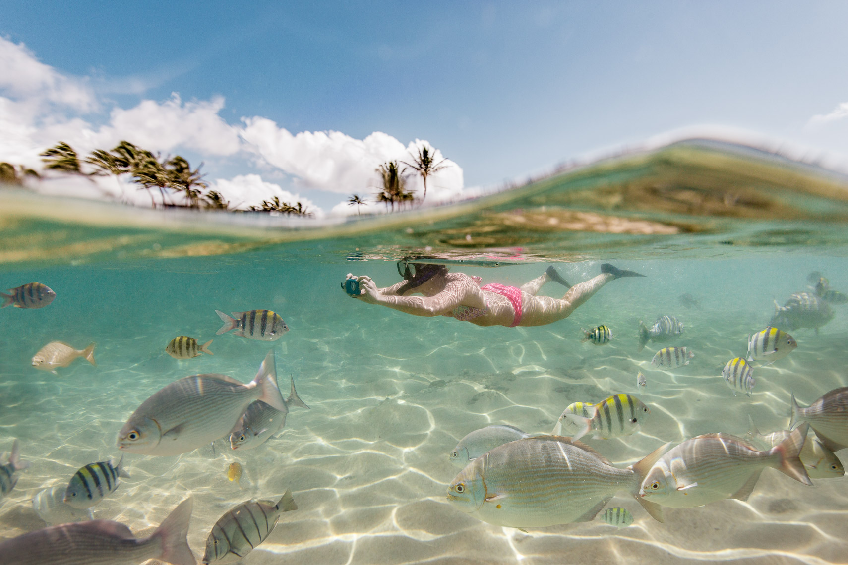 Snorkeling Underwater Photos