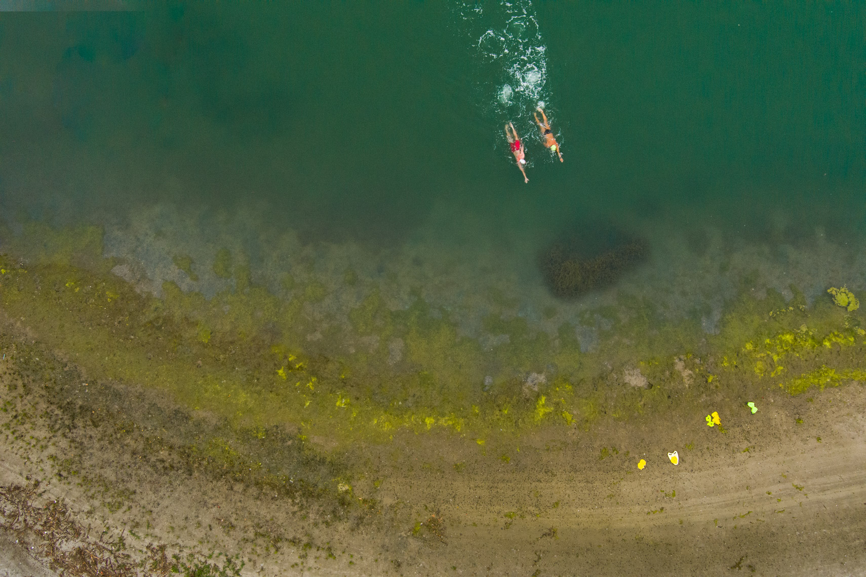 drone open water swimming